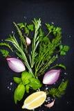 Fondo nero dell'alimento con le erbe aromatiche fresche cipolla rossa e l Immagine Stock Libera da Diritti