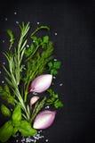 Fondo nero dell'alimento con le erbe e le spezie aromatiche fresche, copia Fotografia Stock