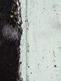 Fondo nero e verde pallido Fotografia Stock