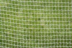 Fondo neto de los deportes Imagenes de archivo