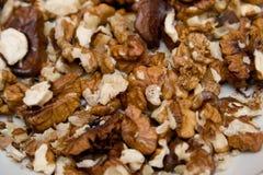 Fondo Nuts Fotografía de archivo