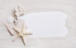 Fondo o segno nautico marittimo con le coperture e le stelle marine FO Fotografia Stock Libera da Diritti