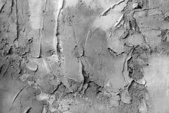 Fondo o struttura - parete intonacata Fotografie Stock Libere da Diritti
