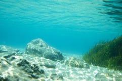 Fondo oceánico Fotos de archivo libres de regalías