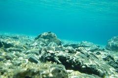 Fondo oceánico Imágenes de archivo libres de regalías