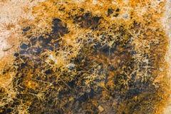 Fondo orgánico del modelo de la textura Imagen de archivo libre de regalías