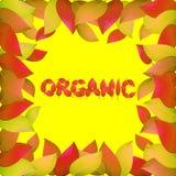Fondo organico autunnale con le foglie gialle Illustrazione luminosa sul tema dell'autunno Immagine Stock