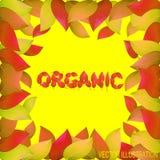 Fondo organico autunnale con le foglie gialle Illustrazione luminosa sul tema dell'autunno Illustrazione di vettore Immagini Stock