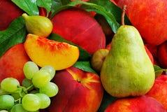Fondo organico di frutti Fotografia Stock