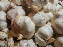 Fondo organico fresco di struttura dell'aglio fotografia stock libera da diritti