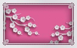 Fondo oriental rosado del modelo con las flores y el marco de Sakura Fotografía de archivo