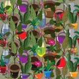 Fondo original con las plantas del hogar Foto de archivo