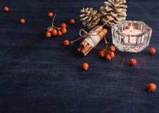 Fondo oscuro de la Navidad con las velas y las bayas de la ceniza de montaña Conos del pino blanco Ramifican las bellotas Imágenes de archivo libres de regalías