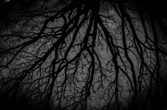 Fondo oscuro de Víspera de Todos los Santos Fotos de archivo