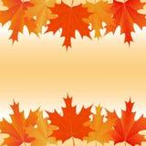 Fondo otoñal de las hojas de arce stock de ilustración