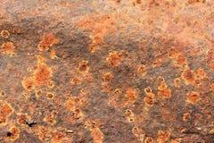 Fondo oxidado de la textura del metal Fotografía de archivo