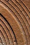 Fondo oxidado del metal de hoja Foto de archivo libre de regalías
