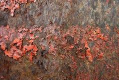 Fondo oxidado rojo del metal Imagenes de archivo