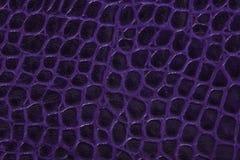 Fondo púrpura de la textura del cuero repujado Imagen de archivo