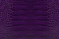 Fondo púrpura de la textura del cuero repujado Foto de archivo