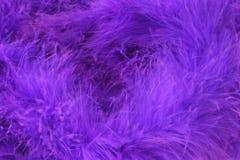 Fondo púrpura del absract Imagenes de archivo