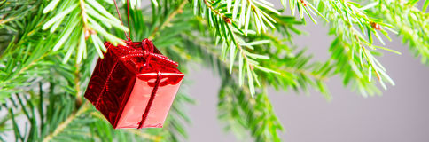Fondo panorámico de la Navidad o del Año Nuevo con la rama verde y la caja de regalo roja Fotos de archivo