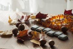 Fondo para el humor del otoño con las hojas de otoño y las bellotas del roble rojo septentrional Imágenes de archivo libres de regalías