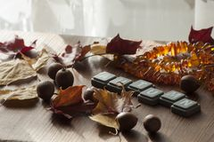 Fondo para el humor del otoño con las hojas de otoño y las bellotas del roble rojo septentrional y del collar ambarino Fotografía de archivo libre de regalías