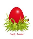 Fondo para los huevos de Pascua rojos en la hierba con la mariquita Fotos de archivo