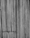 Fondo partido del bambú Fotografía de archivo