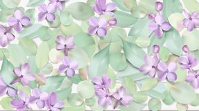 Fondo pastello con i fiori lilla Fotografie Stock