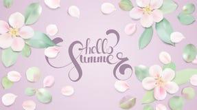 Fondo pastello di colore morbido con i petali del fiore e ciao testo di estate illustrazione vettoriale