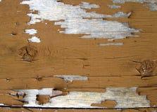 Fondo pelado de la pintura Foto de archivo