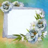 Fondo per la carta di congratulazione Fotografie Stock
