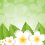 Fondo per una progettazione con i bei fiori Fotografie Stock Libere da Diritti