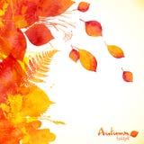 Fondo pintado acuarela del vector de las hojas de otoño stock de ilustración