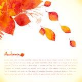Fondo pintado acuarela del vector de las hojas de otoño ilustración del vector