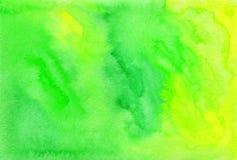 Fondo pintado acuarela verde del vector Imágenes de archivo libres de regalías