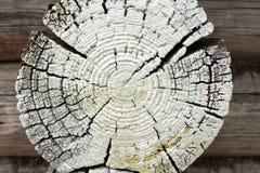 Fondo pintado de madera Imagen de archivo