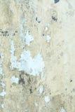 Fondo pintado escamoso foto de archivo libre de regalías