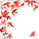 Fondo pintado a mano de la acuarela con las hojas de otoño rojas y amarillas Fotografía de archivo libre de regalías