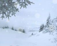 Fondo pittoresco di inverno con il paesaggio della montagna durante la caduta della neve nel mezzo dell'inverno fotografia stock libera da diritti