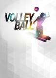 Fondo plano del polígono del voleibol stock de ilustración