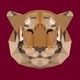 Fondo poligonal del tigre Fotografía de archivo libre de regalías