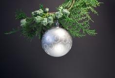 Fondo por la Navidad y el Año Nuevo Rama verde del piel-árbol con una bola de la Navidad en un fondo negro una bola de plata en e Foto de archivo libre de regalías