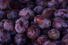 Fondo porpora di struttura dell'alimento del mercato del mazzo della frutta delle prugne Fotografia Stock