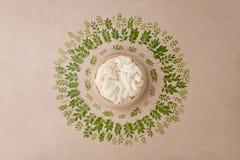 Fondo precioso para el bebé recién nacido, concepto de la flor de vagos recién nacidos imagen de archivo libre de regalías
