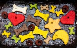 Fondo puesto plano colorido de la comida de perro foto de archivo