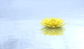 Fondo puro de oro del lirio de agua del loto ilustración del vector