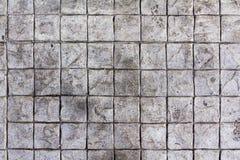Fondo quadrato del blocco in calcestruzzo Fotografia Stock
